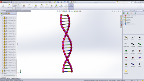 DNA Assembly